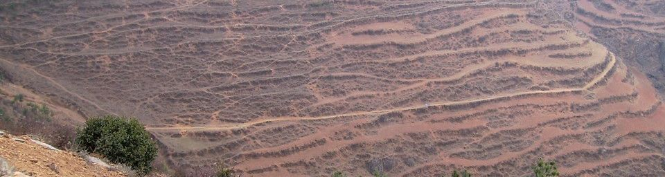 Potato fields in Zhaotong, Northeastern Yunnan, at 1800-2000 m