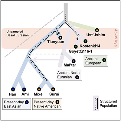 A genetic history of humans in East Asia since 10,000 years ago
